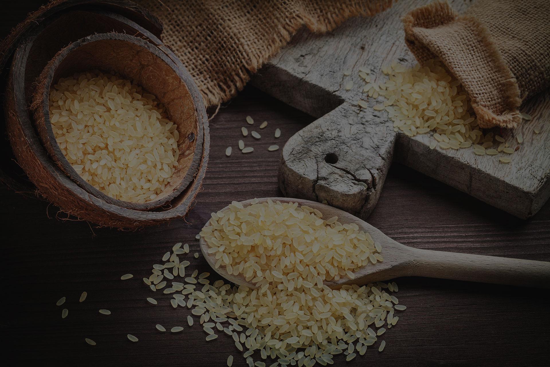 Risotto / Rice